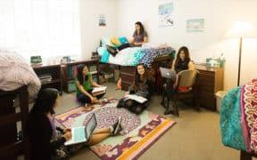 girls in dorm sutdying