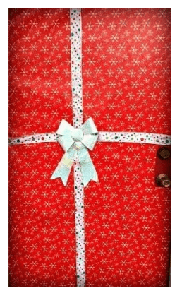 wrapped christmas door